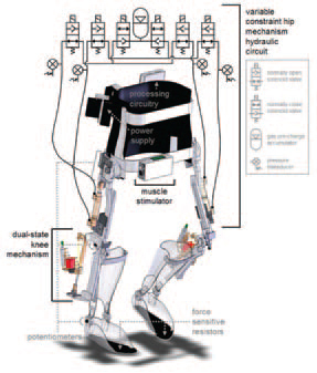 Advanced Exoskeletons For Independent Mobility Advanced